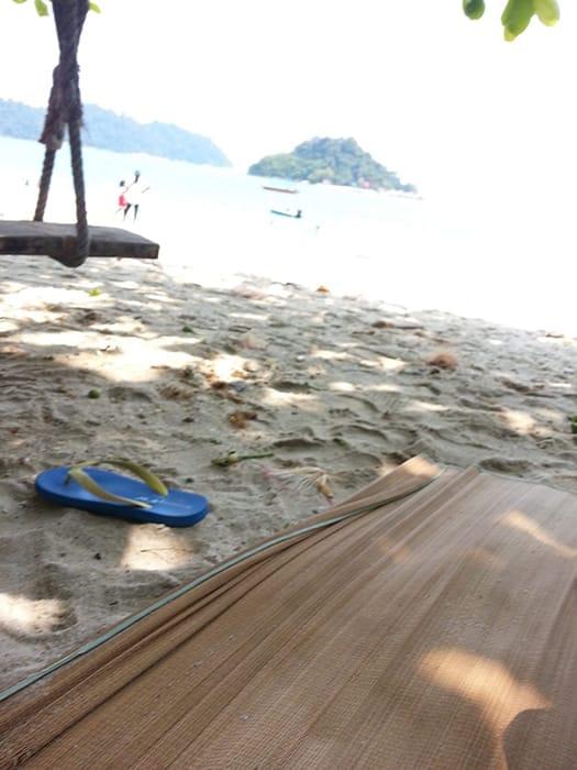 Pangkor Pasir Bogak Beach HORNBILL BIRD